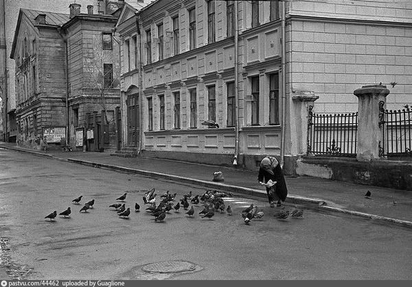 Красивые места в Москве: 7 любимых мест для прогулок Алексея Дедушкина - Места для прогулок в Москв